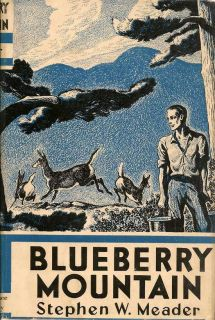 Blueberry Mountain. STEPHEN W. MEADER.