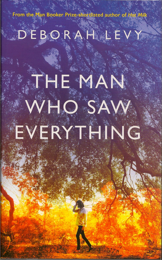 The Man Who Saw Everything. DEBORAH LEVY.